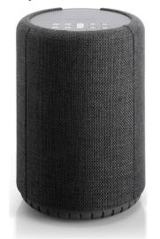 Портативная акустика AUDIO PRO A10 Dark Grey